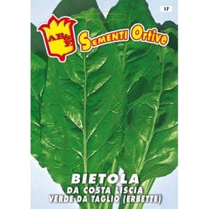 Bietola da Costa liscia verde da taglio (erbette)
