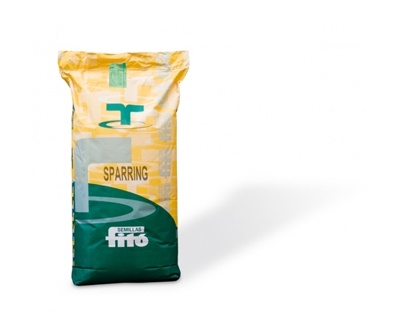 Fito' Sparring- 10kg