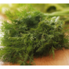 Verdure aneto fresco