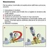 Riduttore di pressione caleffi 1.2