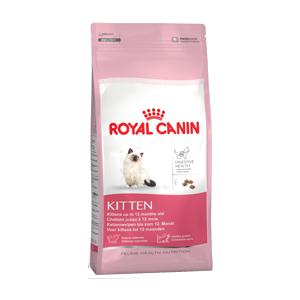 Kitten Royal Canin, alimento per gattini, alimento per gatti fino a 1 anno di età