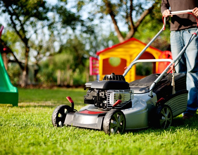 Man grass person abstract plant car lawn male green vehicle color human colorful garden motor vehicle bizarre lawn mower rush mower mow allotment lawn mowing gasoline engine automotive design outdoor power equipment 1380400
