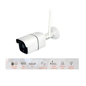 Telecamera Wi-Fi 1080P - IP65 - Cloud - Sdcard - 12V - Domotica HOM-iO