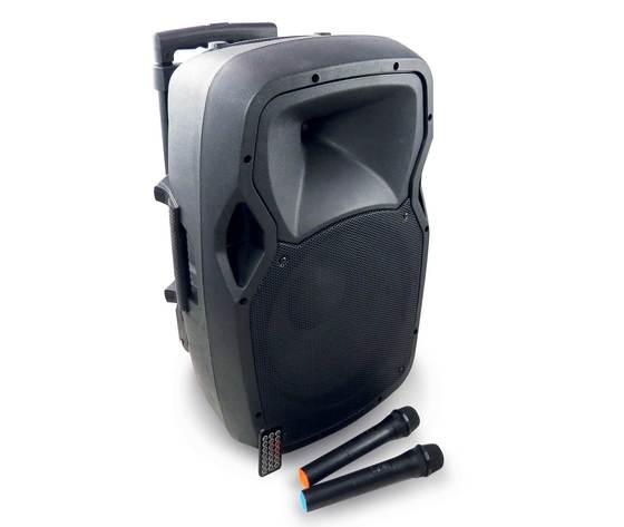 Diffusore amplificato da 120W con 2 radiomicrofoni