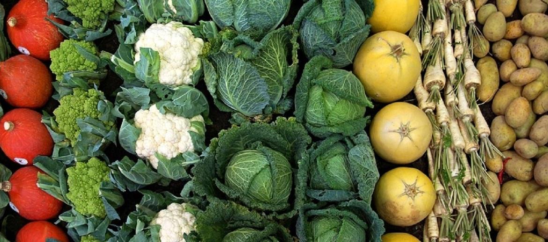 5 vegetables 1736170 960 720