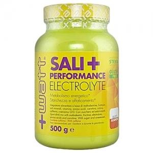 +WATT Sali+ 500 g - Maltodestrine e Sali minerali