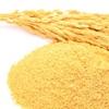 Foto di semola di grano duro