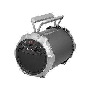 Altoparlante amplificato Trevi XF 300