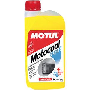 Motocool Expert Refrigerante -37° Motul