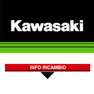 Ricambi Originali Kawasaki