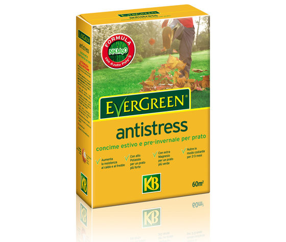 6359 evergreen concime antistress 1 fix
