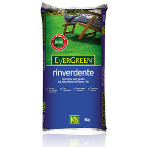 CONCIME GRANULARE EVERGREEN RINVERDENTE kg 20