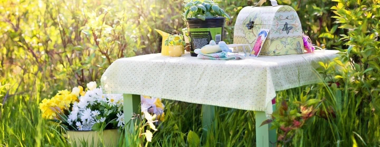 Planting herbs summer gardening garden tools picnic 725420