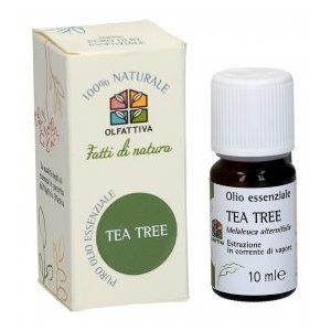 Tea Tree - Olio Essenziale estratto dalla pianta di Melaleuca, con azione antibatterica, antivirale e antifungina
