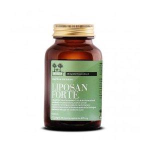 Liposan Forte 100% Naturale - Colesterolo Clinicamente Testato: riduce colesterolo e trigliceridi del 20% circa in soli 3 mesi