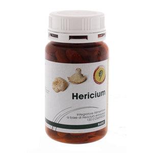 Hericium -  fungo dalle proprietà immunostimolanti - utile in caso di malattie gastrointestinali e per sistema nervoso