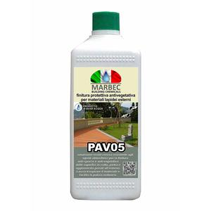 PAV05 - 1L
