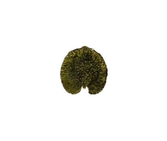 Foglia alchemille forets Riviera cm.17,6