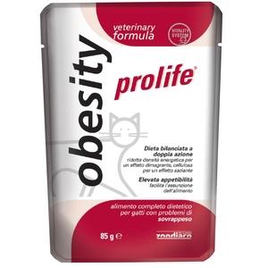 OBESITY 85G