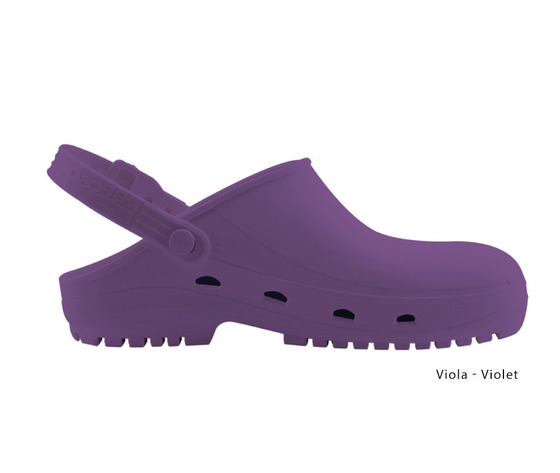 Viola violet