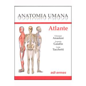 Anastasi, Gaudio, Tacchetti - Anatomia Umana - Atlante
