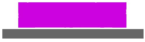 Logo sensual shop 2