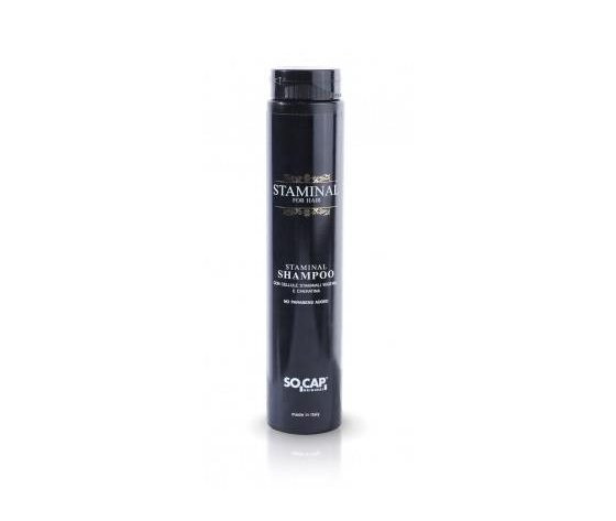 Socap - Shampoo Staminal 250 ml con Cellule Staminali Vegetali e Cheratina