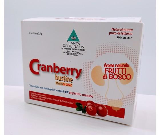 Cranberry 16 Bustine