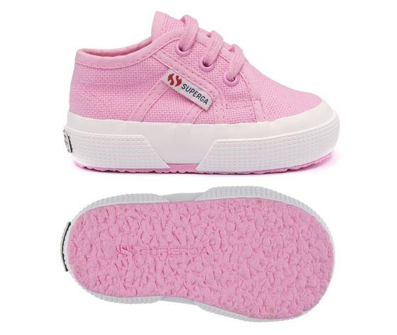 S0005p0v28 pink begonia