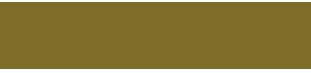 Logo saverio4