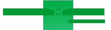 Logo binotti2