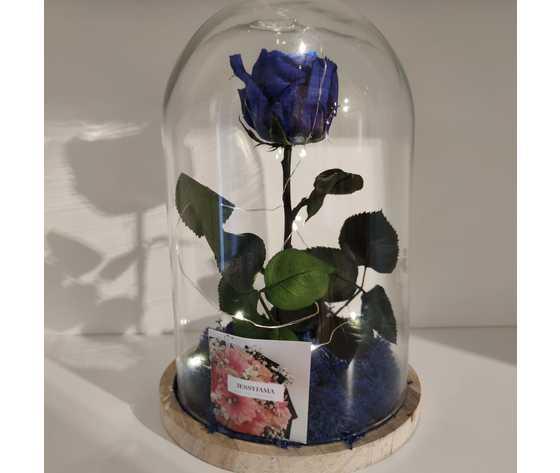 Rosa blu incanto di jessyjama
