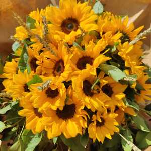 Bouquet Van Gogh