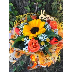 Girasoli & co da 20€ a 70€