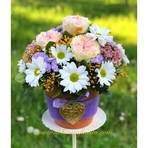Composizioni floreali da 20€ a 70€