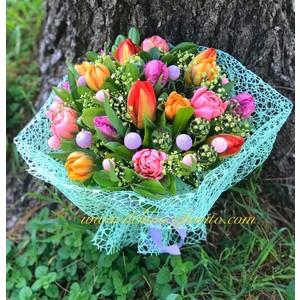 Tulipani che passione da 20€ a 70€