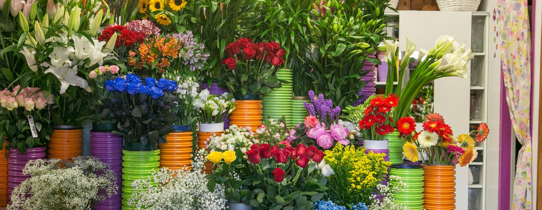 Foto slider testata fiori