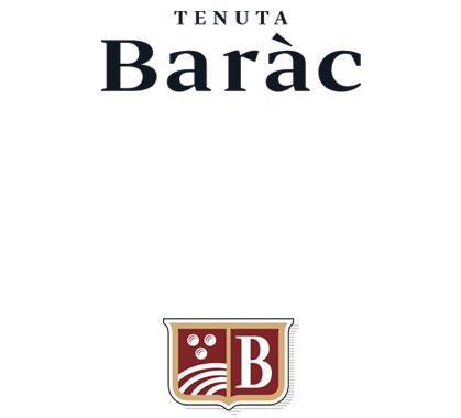 Banner scudo