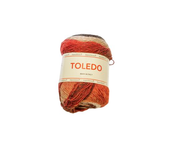 Toledo301