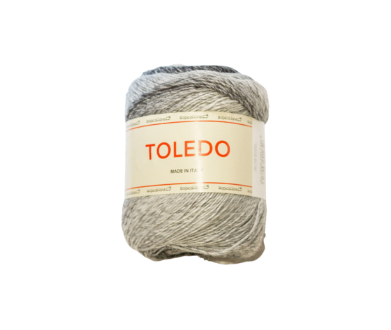 Toledo307