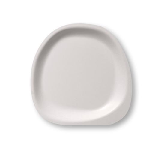 Piatto stone pulp 22 040319120938