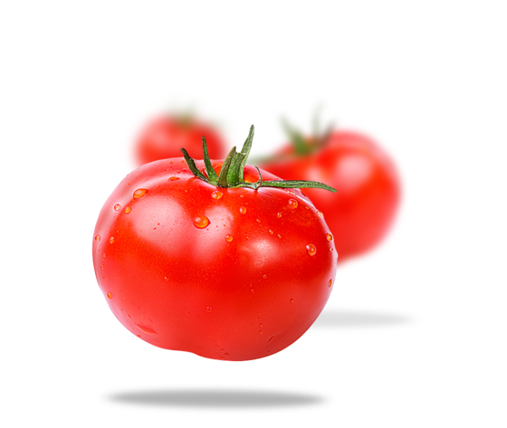 Passata di pomodoro biologica 694 451