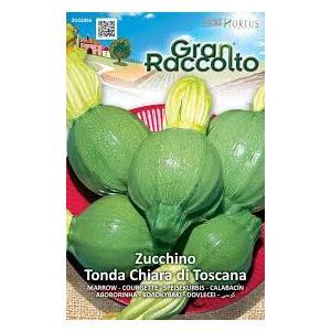 HORTUS Gran Raccolto Zucchino Tonda Chiara di Toscana