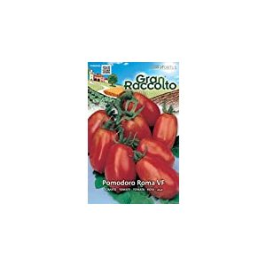 HORTUS Gran Raccolto Pomodoro Roma VF
