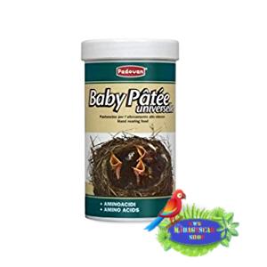 Padovan Baby Patée - Pastoncino per l'allevamento allo stecco - per Nidiacei di Uccelli Granivori - 100 gr