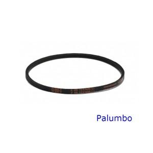 PALUMBO - CINGHIA PASSA-POMODORI