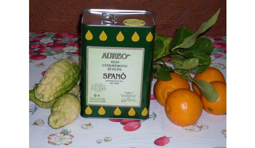 Olio Extra vergine di oliva Fresco di macina - Lattina da 2 l