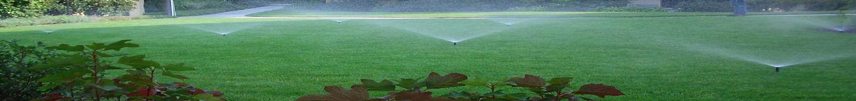 Giardino irrigato1