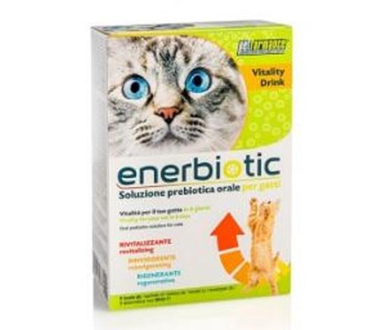 Enerbiotic gatto