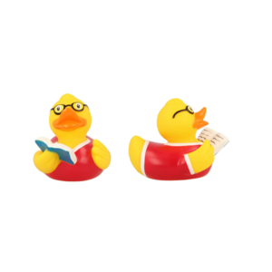 lilalu anatre book reader duck